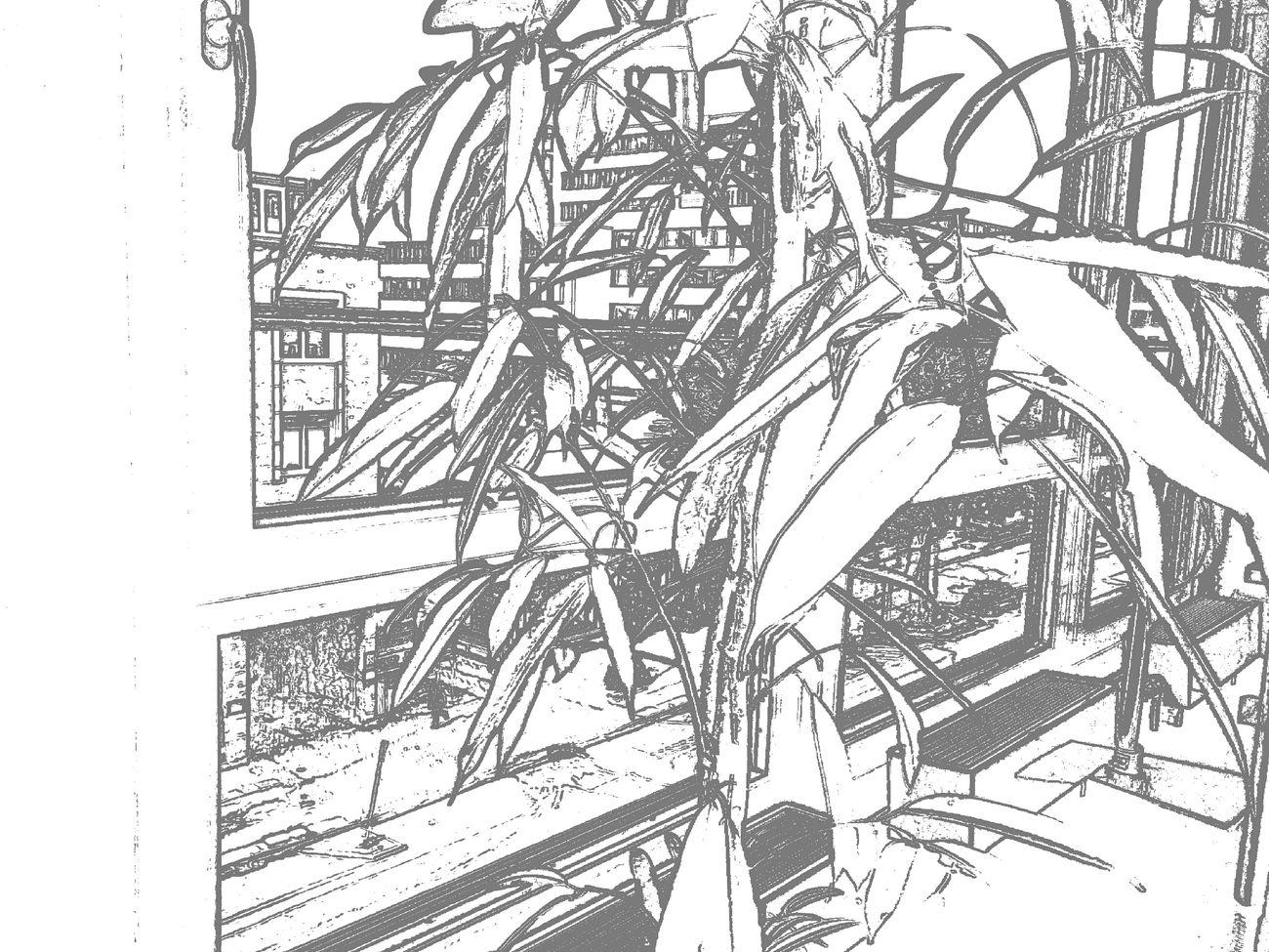 Konturen Papercam