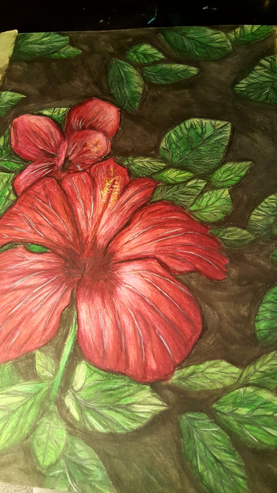 Flower Plant Red Artworks Getting Inspired ArtWork Beauty In Nature Painting Art ArtInMyLife Art And Craft Painting Paintings Artist Oil Painting Colors Creativity Colorful Malerei Draw Kunst The Purist (no Edit, No Filter) Colorpencils Colorpencildrawing Fabercastell Polychromos