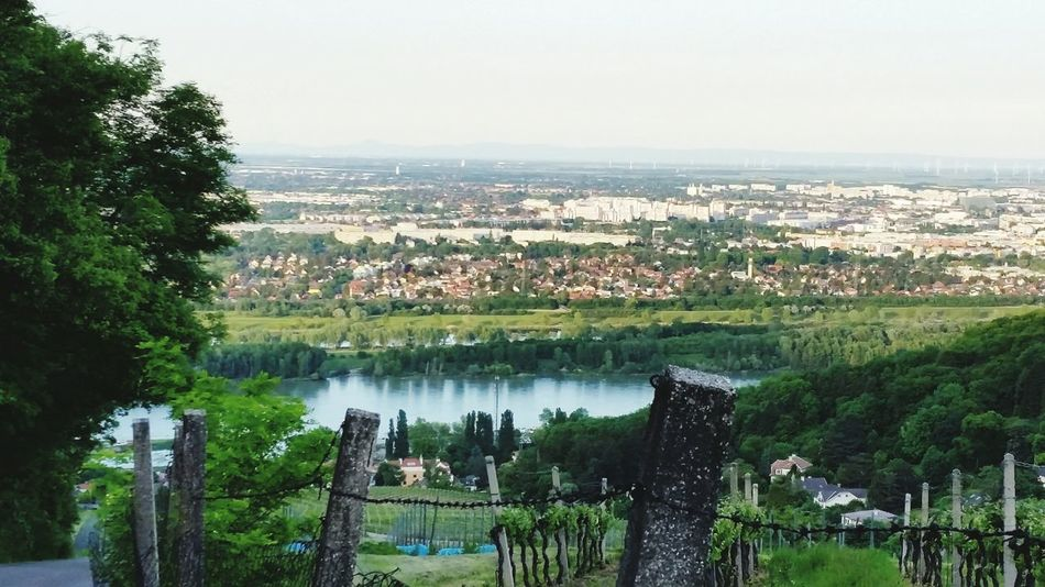 near Vienna Enjoying Life Landscape_Collection Landscape_photography Beauty In Nature Enjoying The View Blue Sky Beauty Of Nature For My Friends 😍😘🎁 Enjoying Nature Bicycle Trip Vienna's Calling😍😎 Tranquil Scene Favorite Places Love That View Vienna Holidays