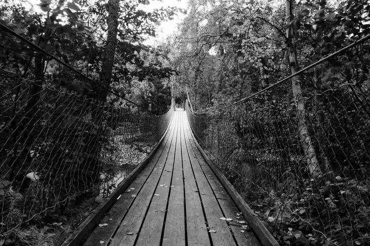 Nature Footbridge Day Outdoors The Way Forward Wood - Material No People Saltdal Junkerdalsura Monocrome Landscape Black And White Collection  Blackandwhite Photography Water River North Of Norway Perspectives On Nature EyeEm Selects Beauty In Nature Built Structure Low Angle Suspension Bridge, Black And White Friday