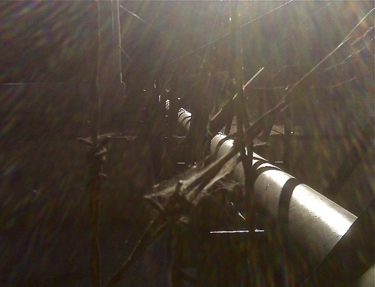 Barbed Wire Brown And Black Cobwebs Creek Crossing Dangerous Glare Of The Sun Hanging Vines Off Into Where? Steel Pipe