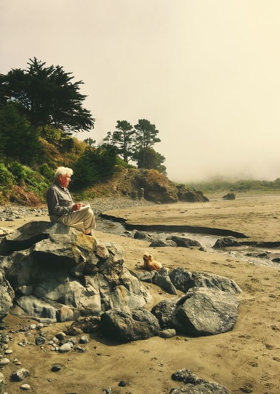 Old Man of the Sea Landscape #Nature #photography Artist Beauty In Nature Fine Art Photography California California Coast Coast Dog Family Foggy Foggy Landscape Idyllic Landscape Landscape_photography Nature Natural Beauty Old Man Of The Sea... Outdoors Fine Art Photoghraphy Beautiful Nature Tranquil Scene Tranquility Tree Foggy Morning Finding New Frontiers