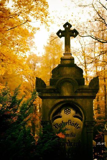 Cmentarz Cemetary Cementery Cemetery