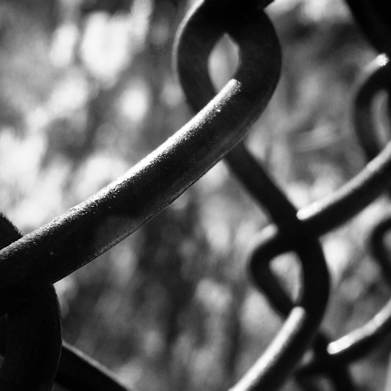 Close-up Extreme Close-up Fence Focus On Foreground Iron - Metal Link Linked Metal Wrought Iron