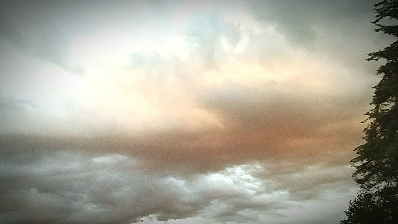 cloud - sky, beauty in nature, nature, sky, atmospheric mood, low angle view, tree, no people, weather, scenics, tranquil scene, tranquility, outdoors, day, storm cloud