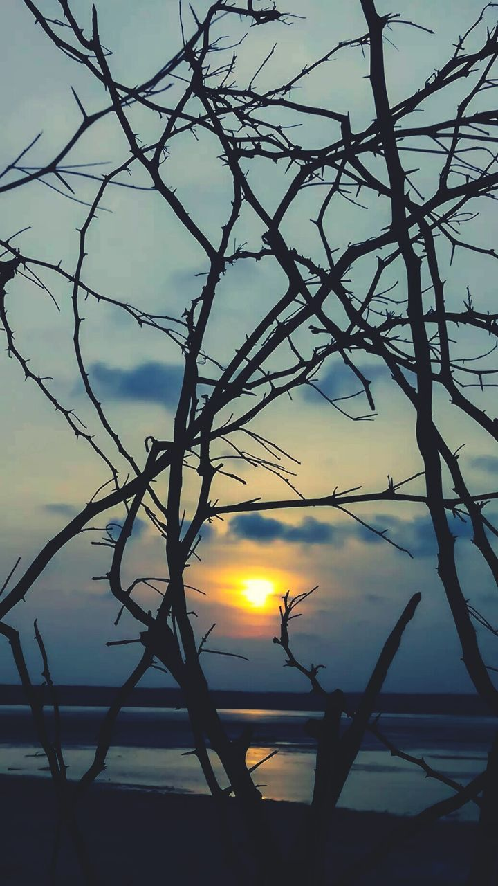 sunset, beauty in nature, nature, silhouette, sun, no people, tranquility, tree, branch, outdoors, sky, tranquil scene, scenics, bare tree, water, day