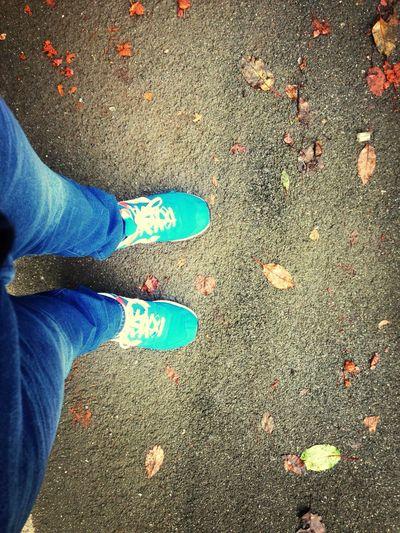 Floortraits Herbst