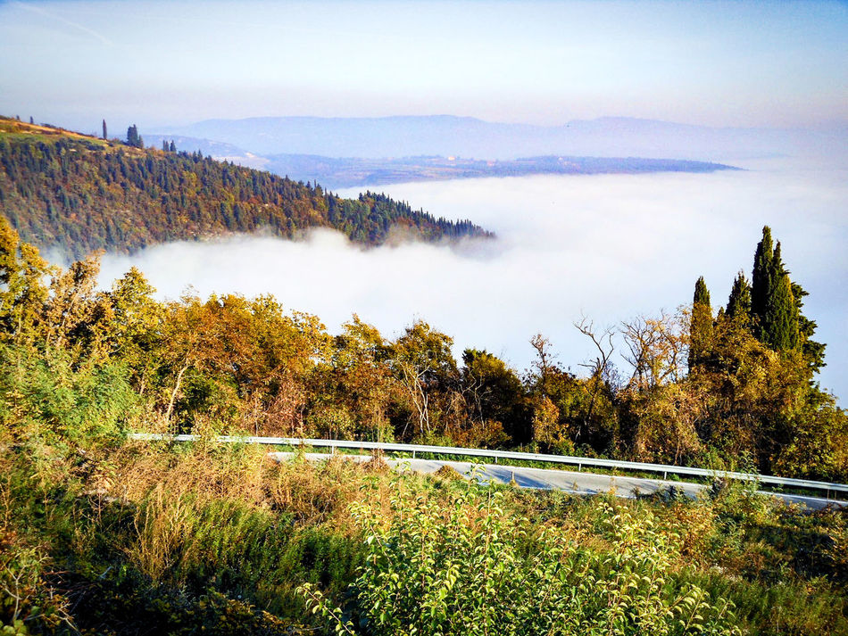 Above The Fog Autumn Landscape Beauty In Nature Horizon Landscape_photography No People On The Road Outdoors Softness Tranquil Scene View From Above