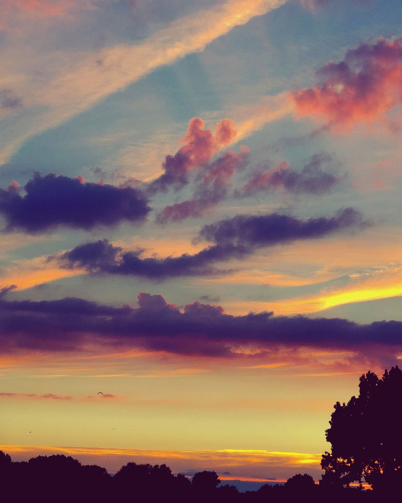 Sunset And Clouds  Sunsetporn Sunset_collection Cloudscape Skylovers Sky And Clouds Cloudysky Colorful Nature_perfection EyeEmNewHere Sunsetgram Sunsetphotographs Sunset_madness Sunset_captures Sunsetlover Sunsetmadness Rainbowcolors