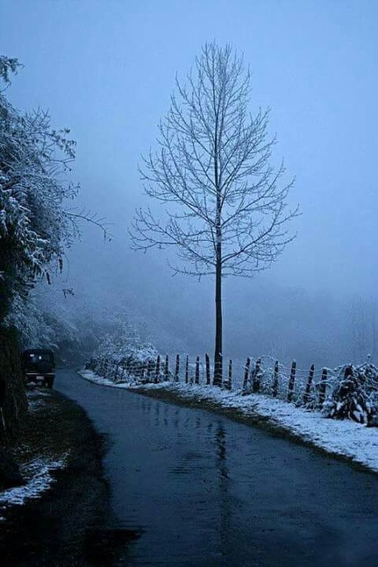 Travelling from rangpo to North Sikkim in winter time... Snow❄⛄ Snowfall Snow ❄ EyeEm Nature Lover Nature_collection Beautiful Nature