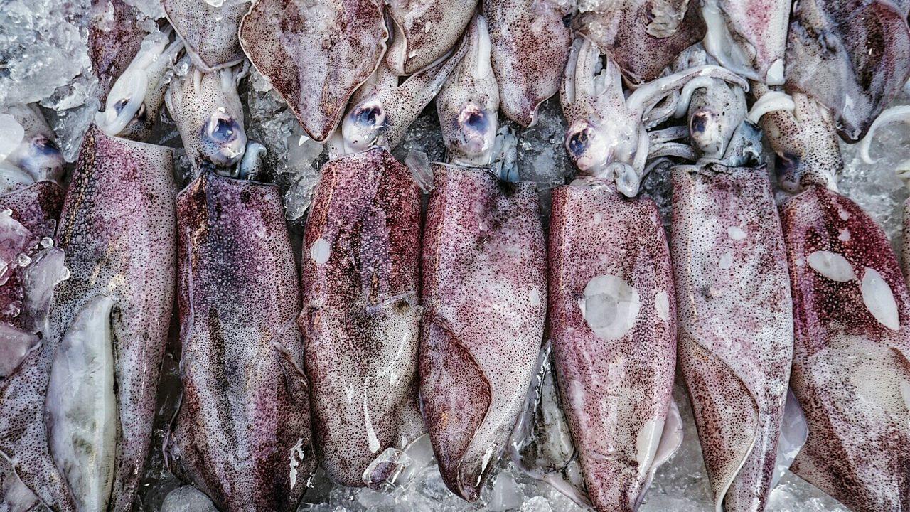 Squids Squid Fresh Fish Vendor Dinner BBQ Street Food Southeast Asia ASIA Southern Thailand Seafood Fresh Neighborhood Map