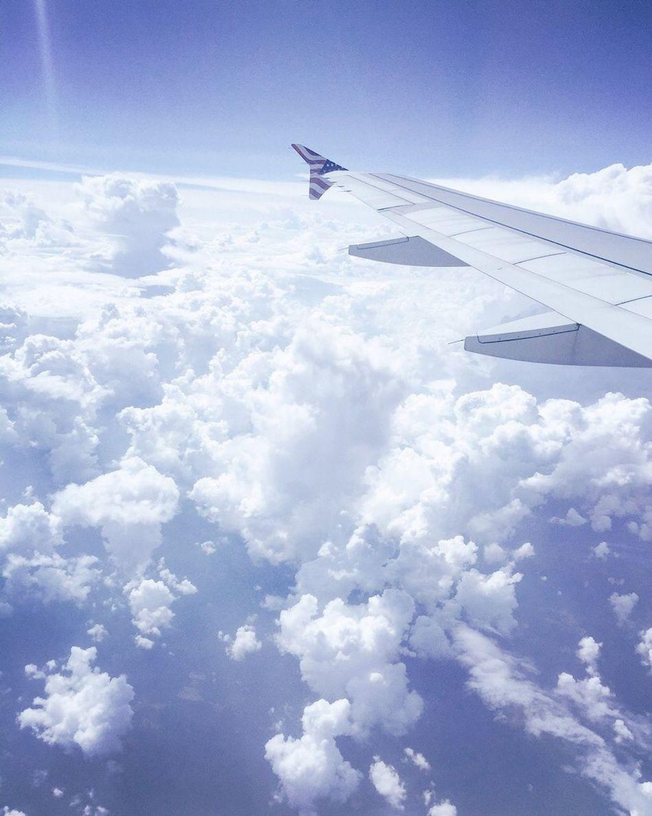 Traveling Flight Sky Skyporn Clouds Lot71camera