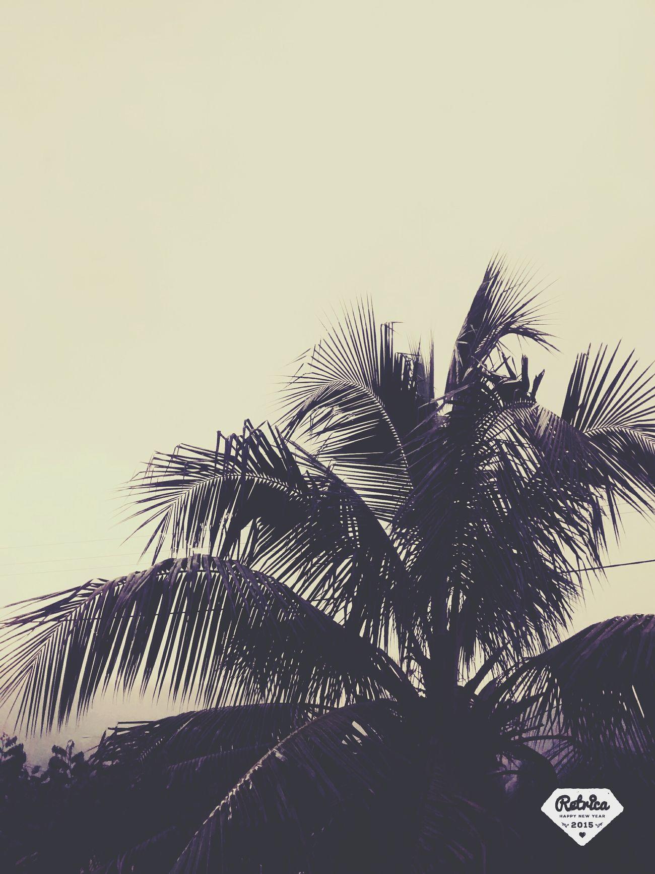 La fora a chuva cai ... 💧❇❇