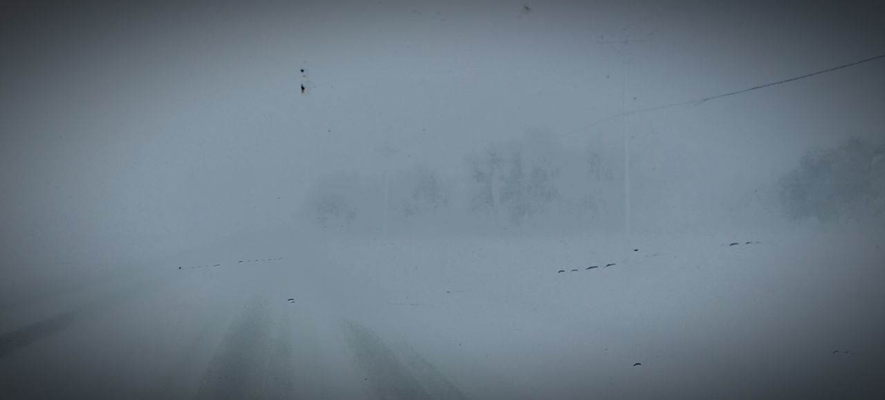 Spring Storm Fort Collins
