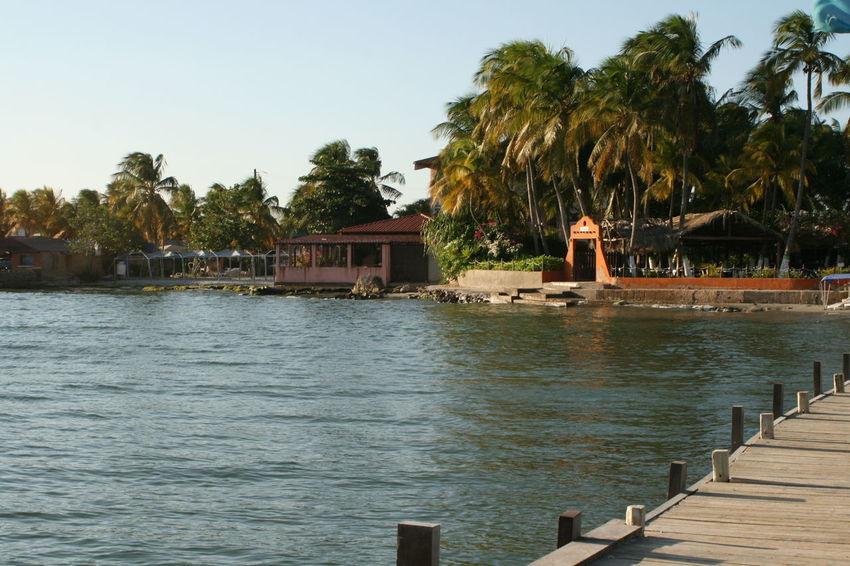 Carribean Evening Margarita Island Margarita, Venezuela Nature Palm Tree Pier Warm Waterfront Playa El Yaque