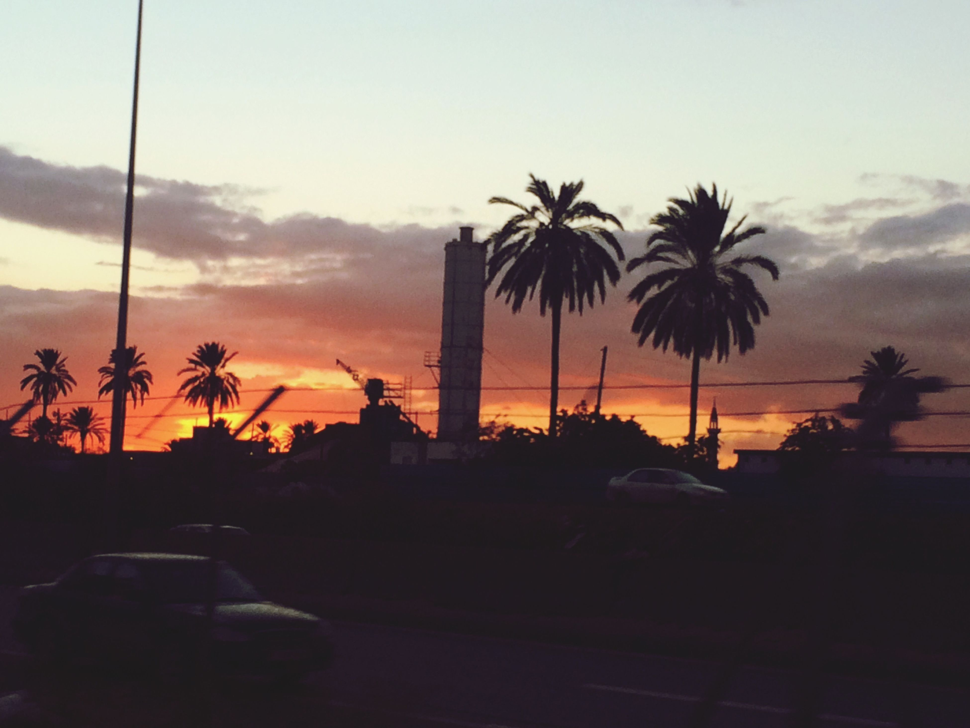 sunset, palm tree, silhouette, sky, car, transportation, land vehicle, mode of transport, tree, road, cloud - sky, orange color, street, nature, dusk, beauty in nature, scenics, cloud, street light, outdoors