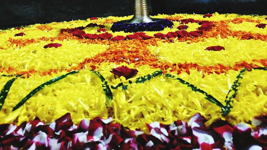 Onam Pookulam Colourful Flowers Gonna Miss This  First Eyeem Photo