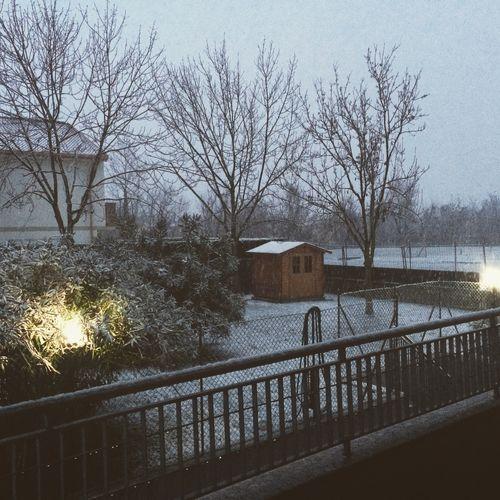 Lei it snow! Snow Winter Landscape Cold