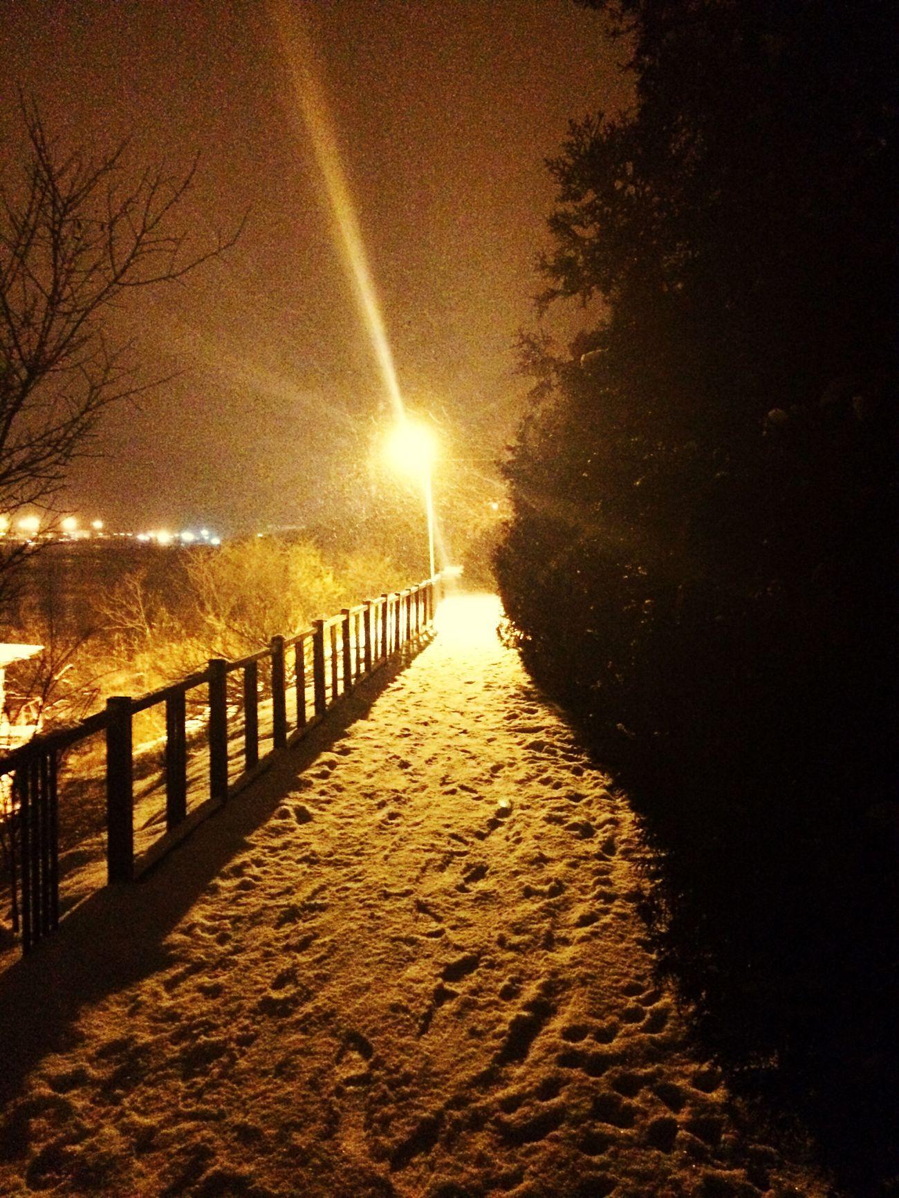 Illuminated Street Light Beauty In Nature First Eyeem Photo
