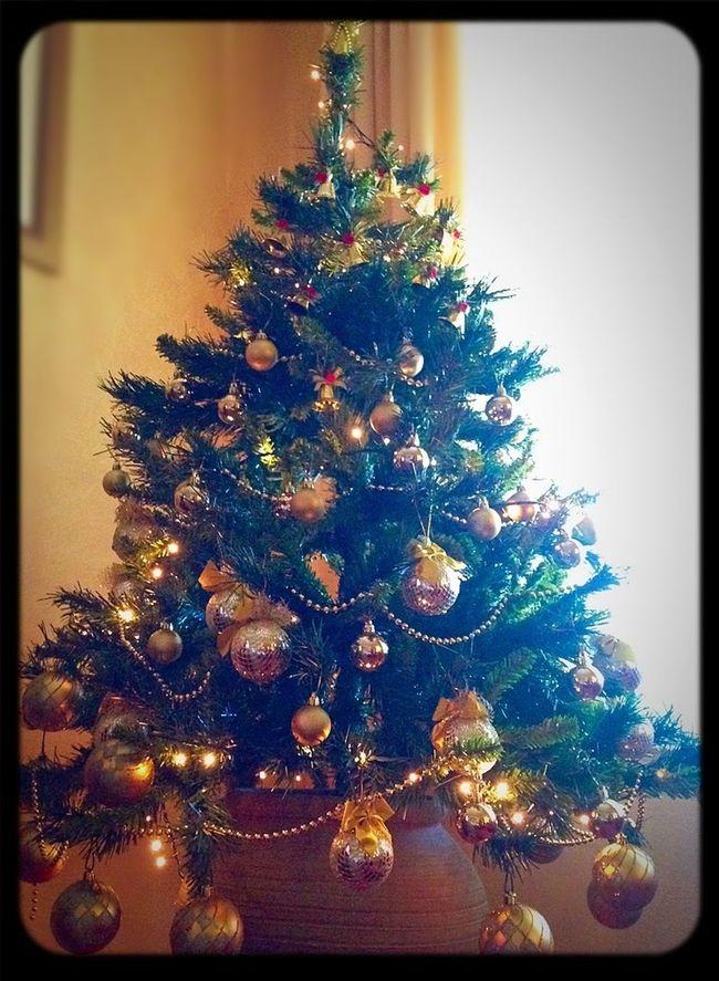 Waiting... Esta Es Mi Vida Esta Es Mi Casa Christmas Tree December Light Colors Christmas Lights Enjoying Life Life