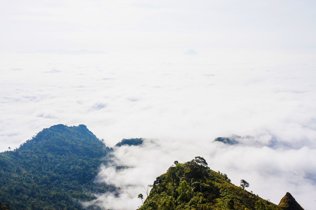 Mountains And Misty. Cloud - Sky EyeEm Best Shots Fog Forest Idyllic Landscape Learn & Shoot: Simplicity Mist Misty Mountains Nature Nature On Your Doorstep No People Non-urban Scene Outdoors Phuchidao Scenics Sky Thailand The Great Outdoors - 2016 EyeEm Awards The Great Outdoors With Adobe WeatherPro: Your Perfect Weather Shot White Color