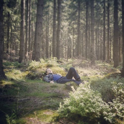 United - MAinLoveWithFreedom Sleeping in the Magic Forest Fairy Tale Forest Breaking Free Freedom What Does Freedom Mean To You? RePicture Love The Moment - 2015 EyeEm Awards - 07.08.2015