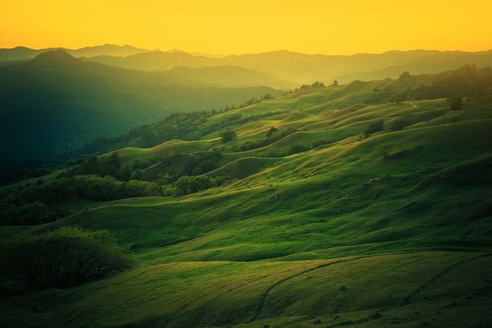 Northern California Scenic Landscape near Eureka, CA, USA Agriculture Beauty In Nature California California Sunset Day Eureka Field Fog Green Color Growth Landscape Mountain Mountain Range Nature No People Outdoors Rural Scene Scenics Sky Sunset Tranquil Scene Tranquility