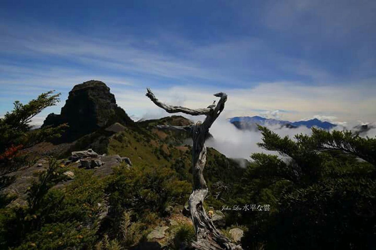 若我是舞者,這將是場美麗邂逅。Taiwan