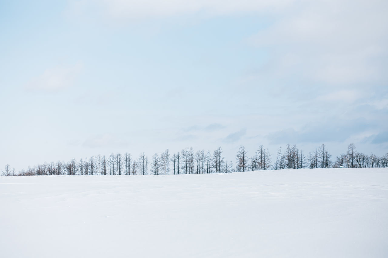 Cloud - Sky Cold Temperature Day Frozen Hokkaido Ice Japan Landscape Mountain Nature No People Non-urban Scene Outdoors Scenics Sky Snow Snowing Tranquil Scene Tranquility Travel Tree White Color Winter