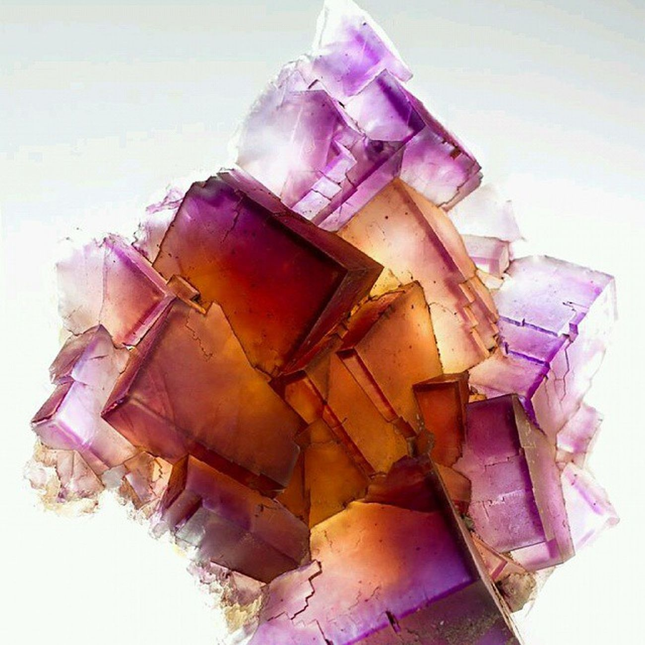 Kuvars grubu minerallerinin ozel bir cesidi Ametrin. Ametist ve sitrin in karisimi diyebiliriz kisaca😉Ametrine is a naturally occuring form of Quartz . Ametrine is a mixture of Amethyst and Citrine .Mineral Mineralogy Stone Gemology Gemstones Naturelovers Nature_perfection Natura Instamineral Turkinstagram Turkishfollowers InstaVsco