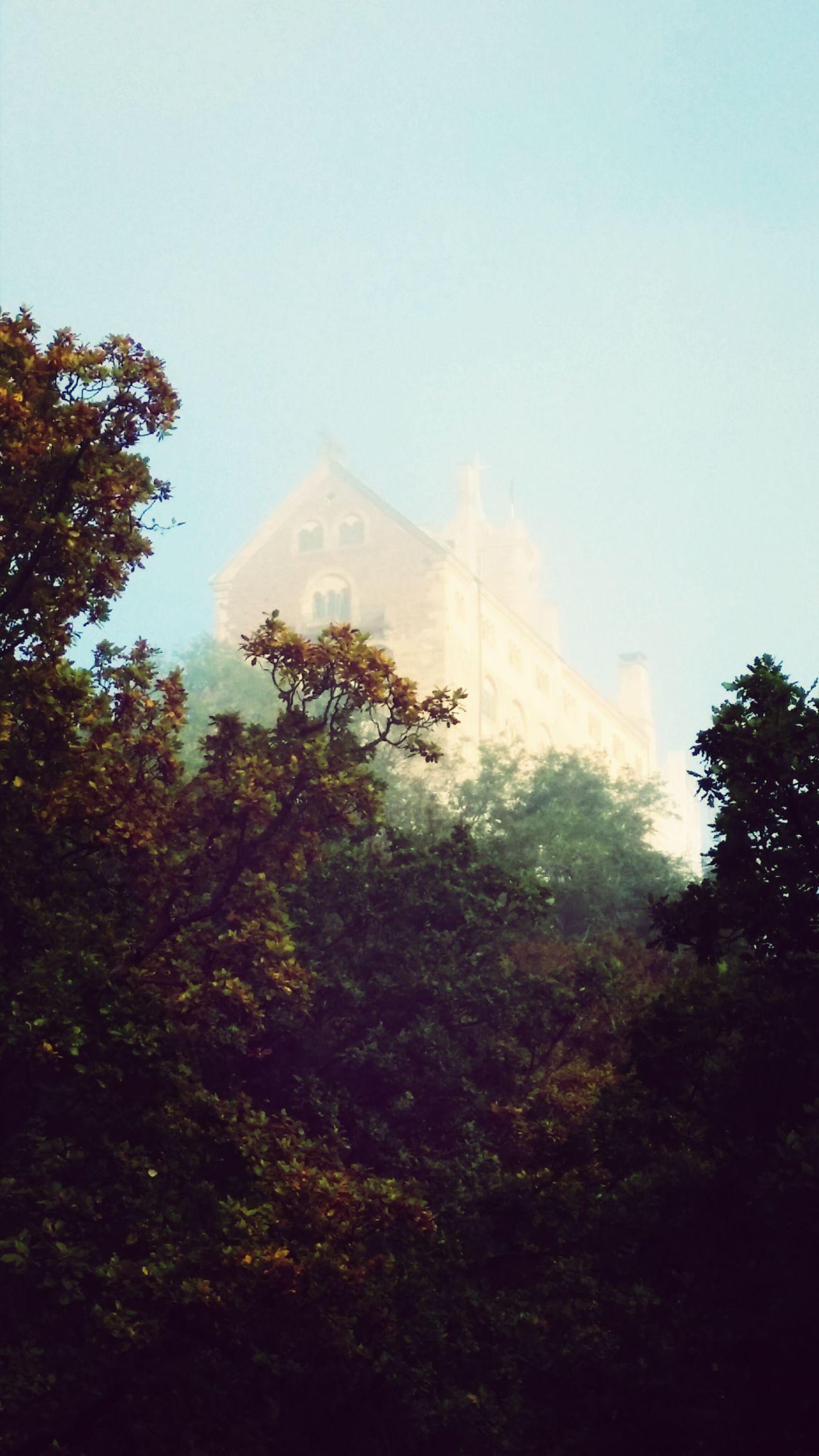 Die Wartburg im Nebel...