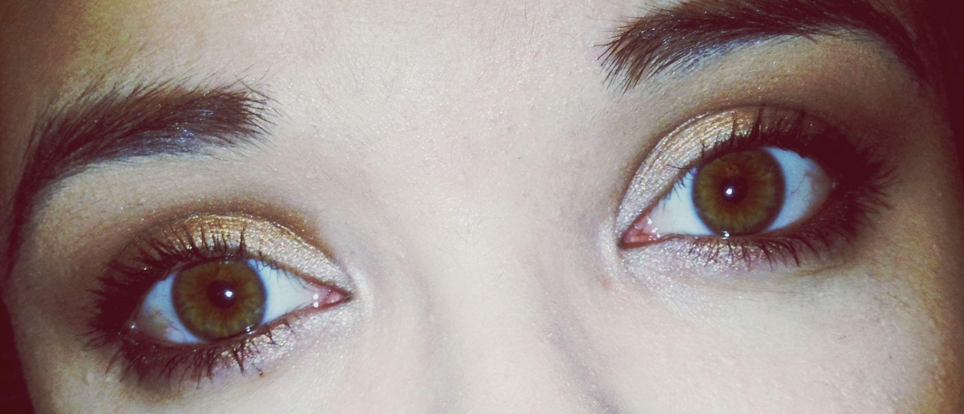 human eye, eyelash, close-up, looking at camera, eyesight, portrait, sensory perception, human face, part of, human skin, extreme close-up, lifestyles, iris - eye, headshot, eyebrow, eyeball, extreme close up
