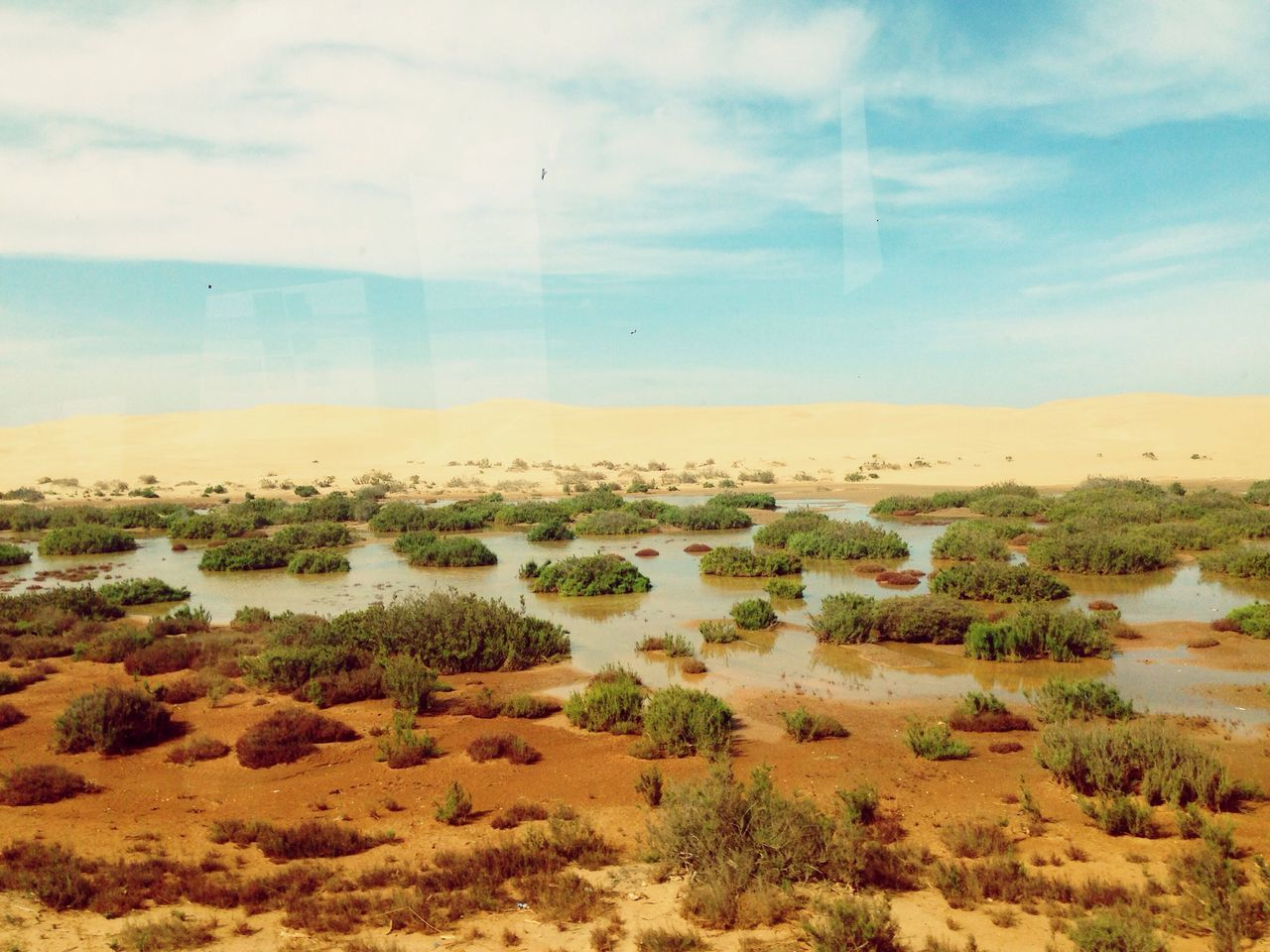Laayoun Southern Sahara When The Desrt Meet The Water