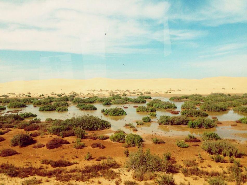 Laayoun Southern Sahara When The Desrt Meet The Water