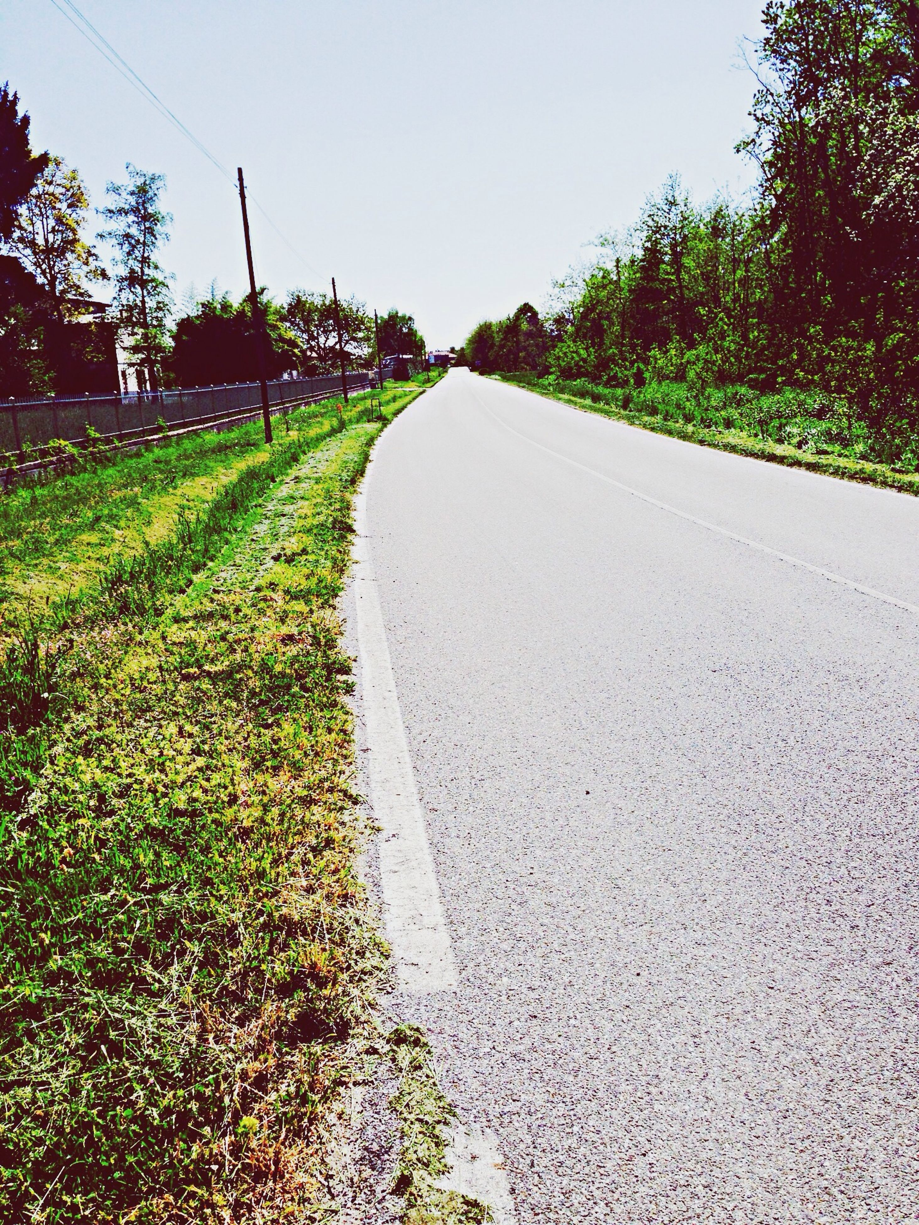 the way forward, tree, clear sky, diminishing perspective, growth, vanishing point, grass, plant, road, tranquility, nature, tranquil scene, field, sky, transportation, landscape, green color, day, empty road, no people
