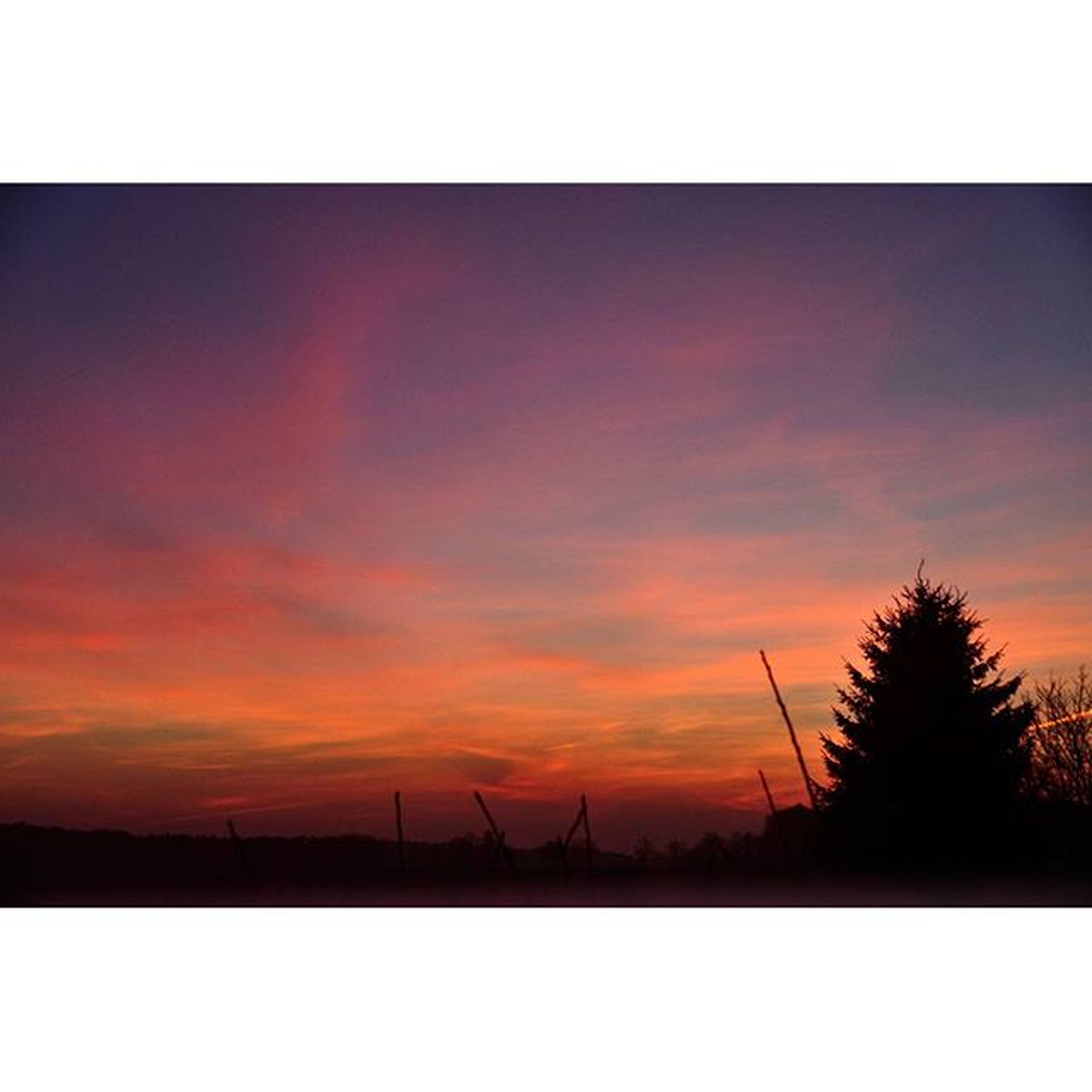 sunset, transfer print, silhouette, sky, auto post production filter, orange color, tranquility, tranquil scene, scenics, beauty in nature, nature, cloud - sky, idyllic, tree, outdoors, dusk, sun, no people, cloud, connection