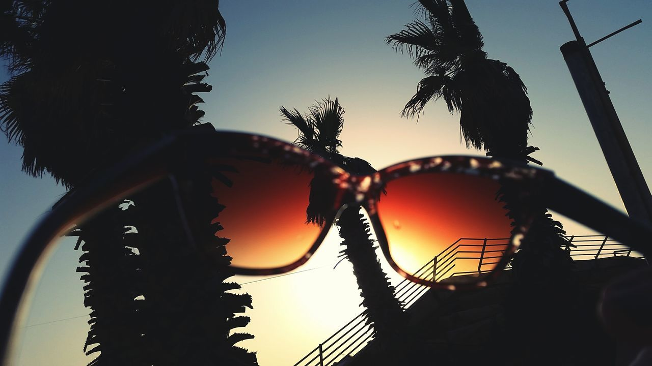 Summer Views Palms Trees Sunglasses Sunset