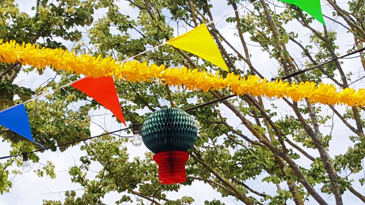 Tree Low Angle View Outdoors Day Growth No People Sky Nature Balloons Santo Antônio De Lisboa Tradition Traditional Party Party Decorations Paint The Town Yellow