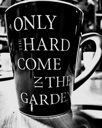 Nur die Harten kommen in den Garten...only the strong survive. A game on words in german english 😉 Drink Close-up Food And Drink Text No People Indoors  Day Blackandwhite Cup Tasse Sprichwort Pun