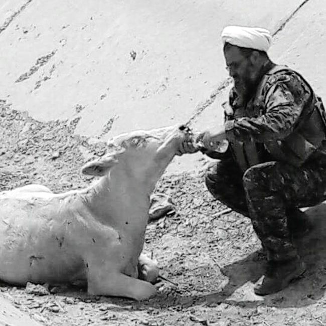 This is (Al-Hashid shaapy) ✌ Iraq Focus On Foreground Photooftheday Waist Up Monochrome Photography Photography Themes Incidental People Army Strong Confidence  Army Life High Section Whiteandblack Photographylovers TakeoverContrast Iphonephotography Person Animals In The Wild Animal Themes One Animal Leisure Activity HUMANITY Humanityphotography EyeEm Best Shots Lovely Domestic Animals