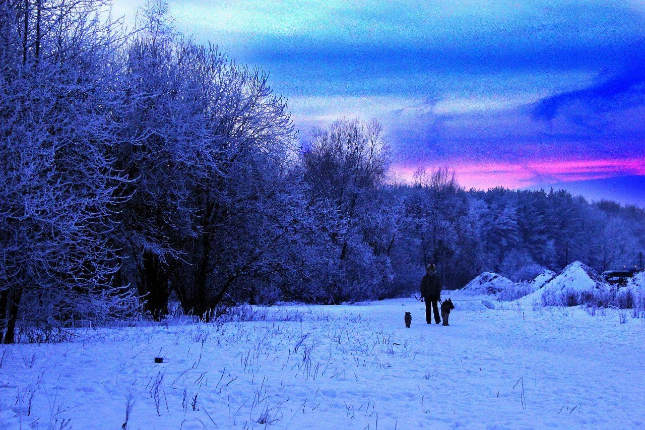 Snow Tree Winter Cold Temperature Nature Weather Beauty In Nature Sky Growth Real People Leisure Activity Outdoors Scenics Day One Person Landscape Men People