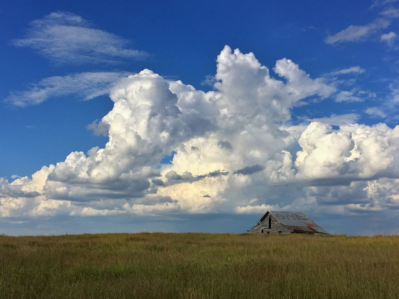 Old barn with a big Oklahoma sky Landscape Nature Sky Beauty In Nature Tranquil Scene Grass Scenics Field Tranquility Cloud - Sky No People Outdoors Day barn,