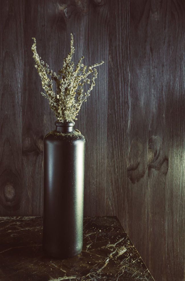 Sagebrush Absinthe Close-up Decor Design Dried Nature Old Plant Santonica Scandinavia Showcase April Still Life Tarragona Vase Wood Wood - Material Wooden
