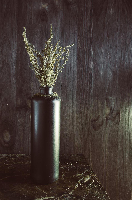 Sagebrush Absinthe Close-up Decor Design Dried Nature Old Plant Santonica Scandinavia Showcase April Still Life Tarragona Vase Wood Wood - Material Wooden