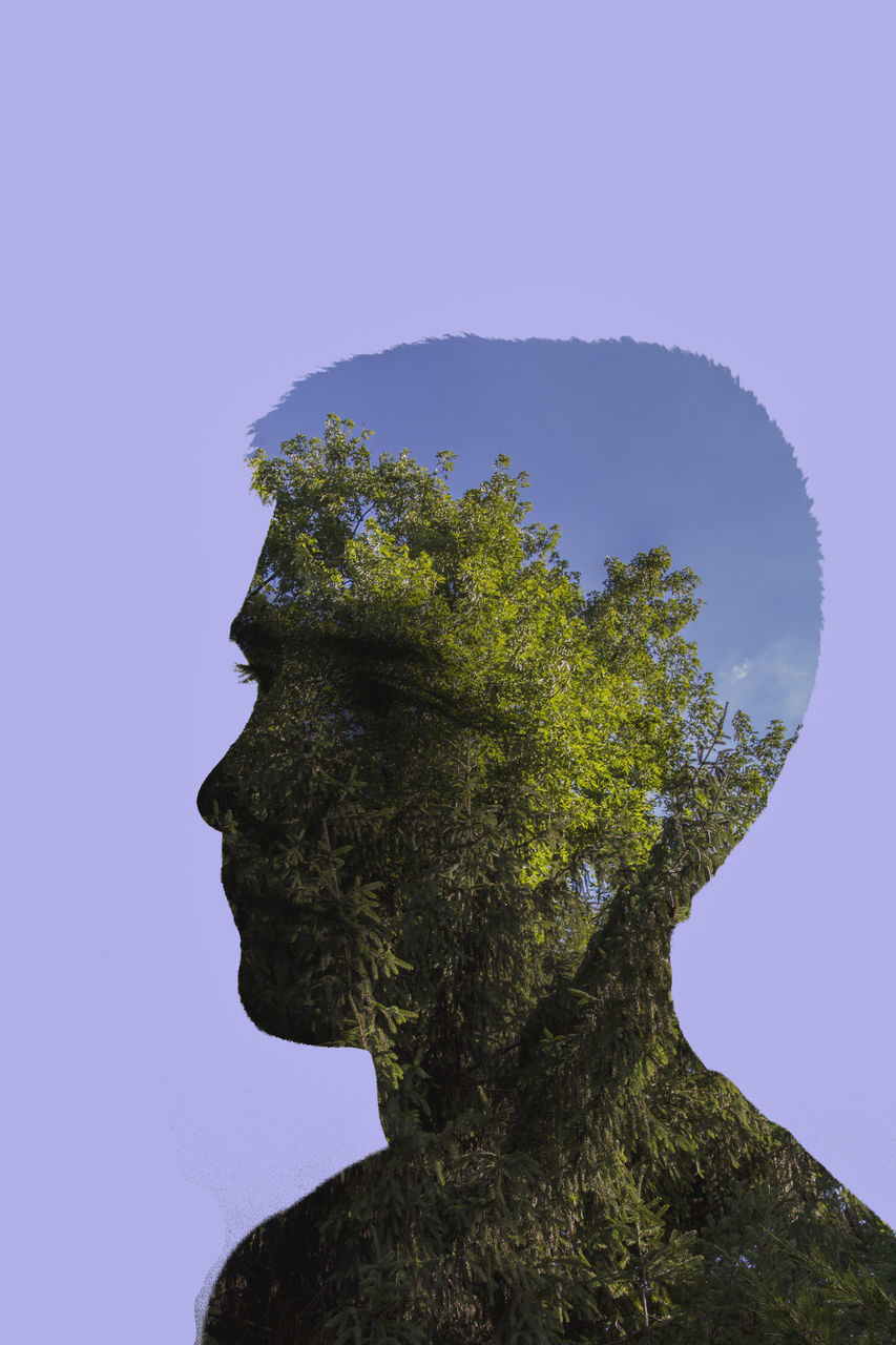 Double Exposure Of Man And Trees Against Purple Background