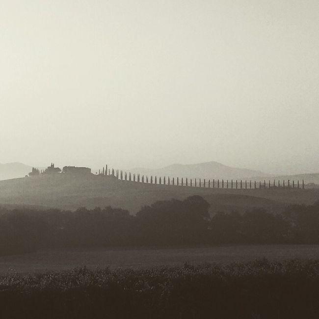 EyeEm Best Shots Tuscany Nature Shootermag Monochrome Silhouette Sunrise Morning