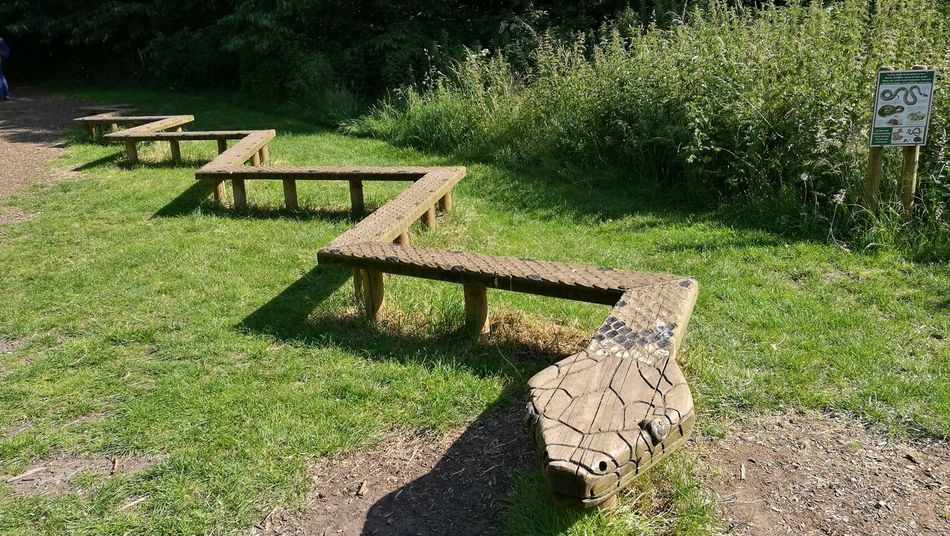 Park - Man Made Space Wood Carving Carving In Wood Wood Bench Textured  Wooden Snake Wood Carving Bench Stylish Outdoors Zig-zag Ruddington Country Park Rushcliffe Country Park