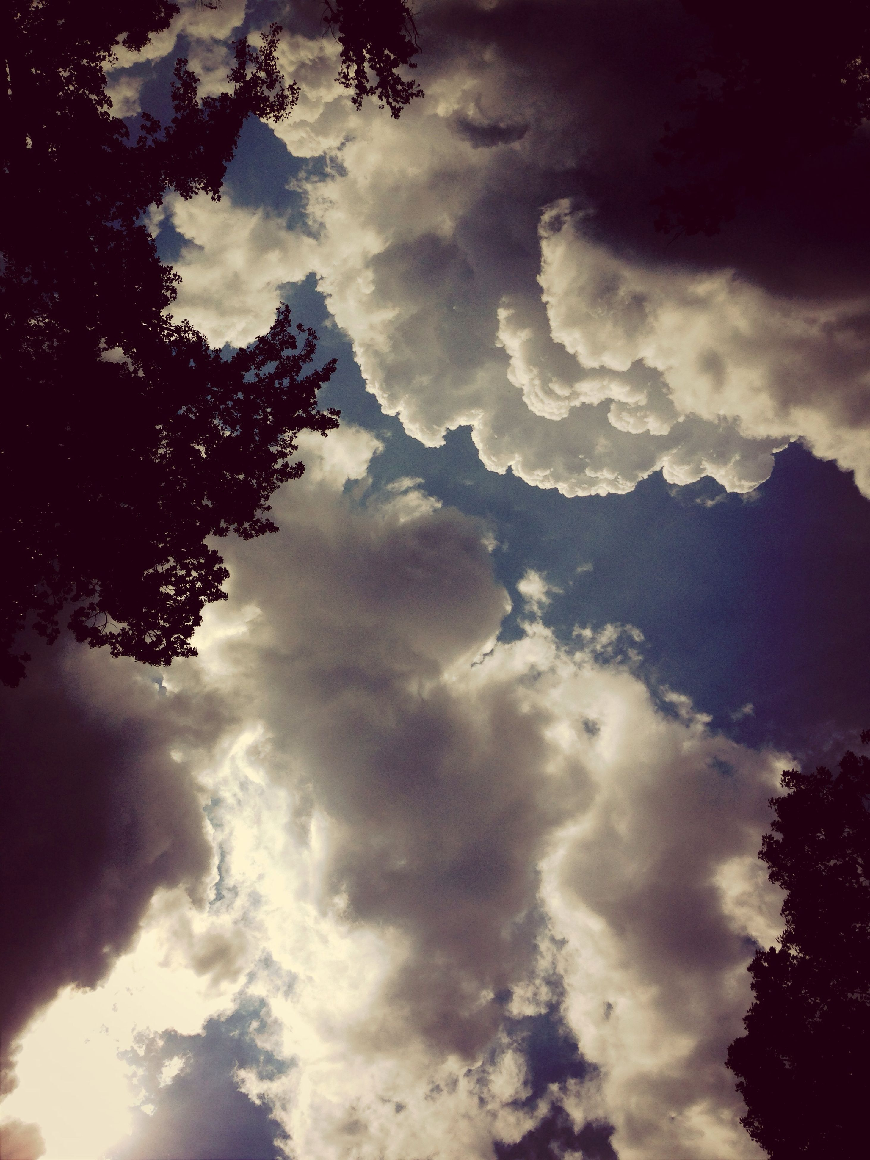 sky, cloud - sky, low angle view, tranquility, tree, beauty in nature, tranquil scene, scenics, cloudy, nature, silhouette, cloud, idyllic, cloudscape, weather, outdoors, no people, majestic, overcast, backgrounds
