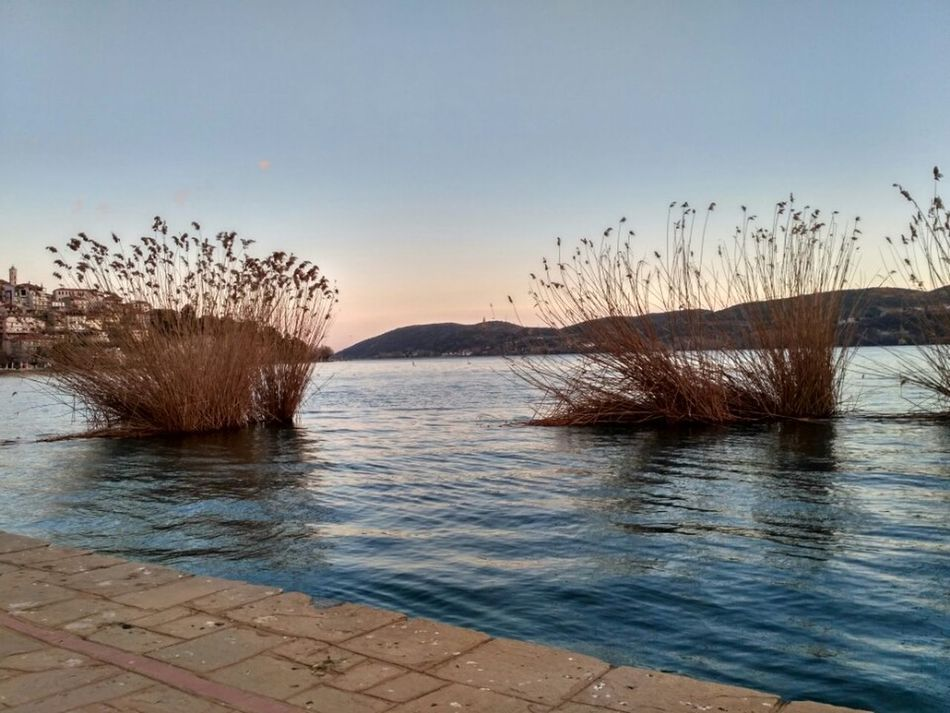 Nature Sunset Sea Water Outdoors Beauty In Nature Tranquility Beach Sky Scenics Sunlight No People Tree Day Horizon Over Water Landscape_Collection Kastoria Nofilters Naturebeautiful Amazing Reflection Nature Lake Beauty In Nature Nofilter Kastoriagreece