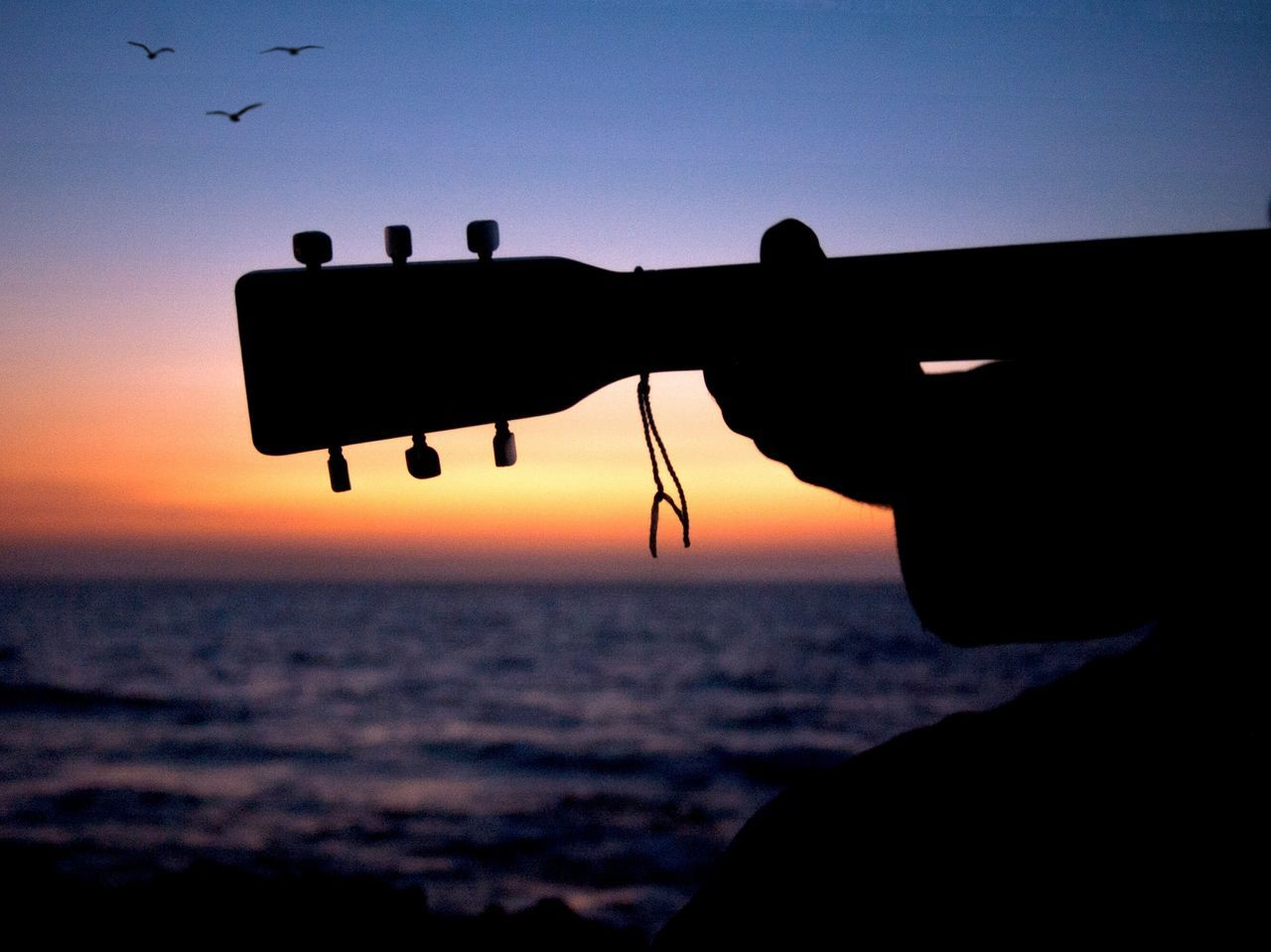 Sunset jam Sunset Silhouette Sky Outdoors Beach One Person Sea Beauty In Nature Ocean Silouette & Sky Birds Flying Clouds And Sky Guitarist Birds In Flight Silhouettes Birds Silhouette Birds Silhoutte Photography Silhouette_collection Ocean View Guitar Guitars Beauty In Nature Bird Music